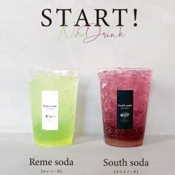 reme _south_soda